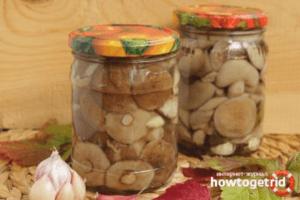 Мариновані маслюки з прянощами