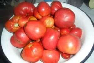 помідори для вогника з часником