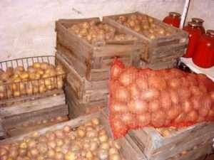 як зберігати картоплю взимку