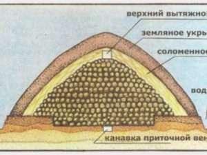 зберігання картоплі насипом