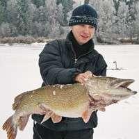 Риболовля в лютому на щуку