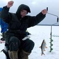 Риболовля в лютому на плотву і підлящика
