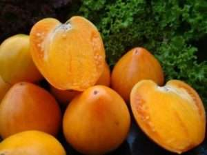 найкраще насіння помідорів подарунок феї