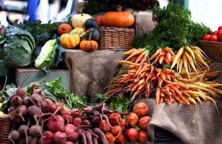 Зберігання овочів, зелені, коренеплодів і фруктів (часнику,картоплі,цибулі,моркви) на зиму в підвалі,погребі