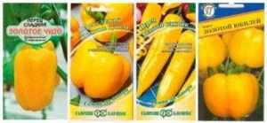 Кращі сорти жовтого перцю для відкритого ґрунту