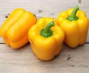 Найкращі сорти жовтого перцю для вирощування на городі і в теплиці