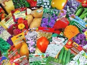 Як квітникарям використовувати місячний посівний календар на березень