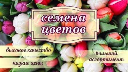 Інтернет магазин насіння квітів: купити насіння квітів поштою в Україні, оптовий продаж насіння квітів